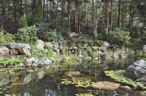 Декоративный пруд с водопадом DEX12